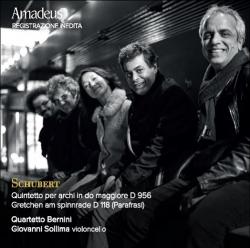 Quintetto per archi in Do maggiore D 956 [DOCUMENTO SONORO]