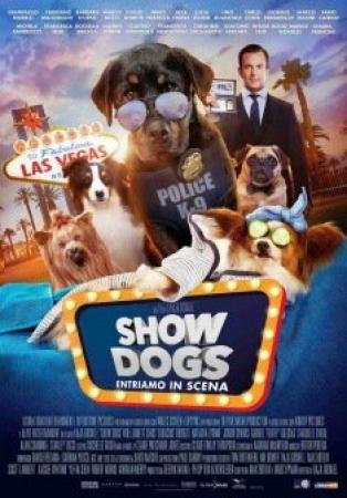 Show dogs [VIDEOREGISTRAZIONE]