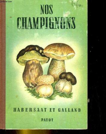 Nos champignons